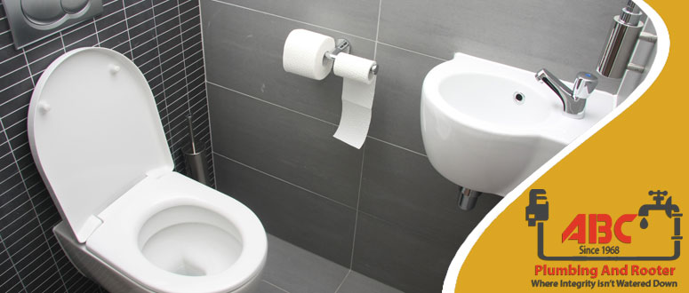 Clogged Toilet Repairs Services in Chandler, AZ